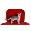 TriedThings Cat Toilet Mat, Red, 60 x 45